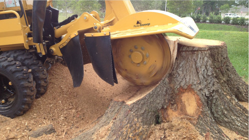 Tree Crown Reduction Wigginton