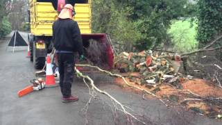Tree Felling Rawcliffe